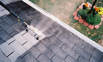 Roof Cleaning in Houston TX Roof Cleaning Services in Houston TX Roof Cleaning in TX Houston Clean the roof in Houston TX Roof Cleaner in Houston TX Roof Cleaner in TX Houston Quality Roof Cleaning in Houston TX Quality Roof Cleaning in TX Houston Professional Roof Cleaning in Houston TX Professional Roof Cleaning in TX Houston Roof Services in Houston TX Roof Services in TX Houston Roofing in Houston TX Roofing in TX Houston Clean the roof in Houston TX Cheap Roof Cleaning in Houston TX Cheap Roof Cleaning in TX Houston Estimates on Roof Cleaning in Houston TX Estimates in Roof Cleaning in TX Houston Free Estimates in Roof Cleaning in Houston TX Free Estimates in Roof Cleaning in TX Houston